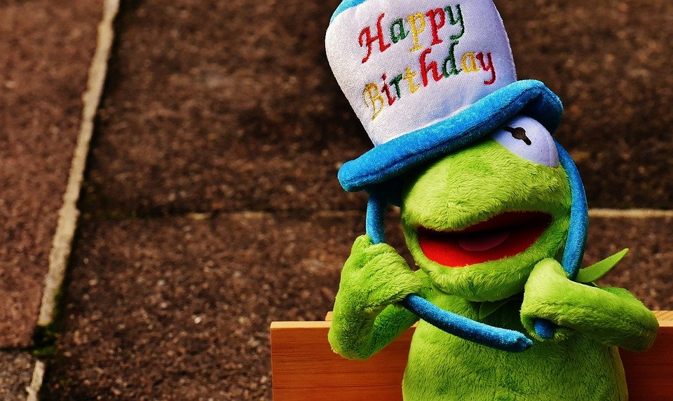 Free photo frog congratulations greeting card birthday kermit max birthday congratulations kermit frog greeting card m4hsunfo
