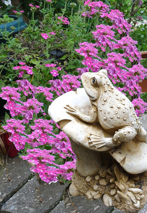 Frog, Garden, Statue