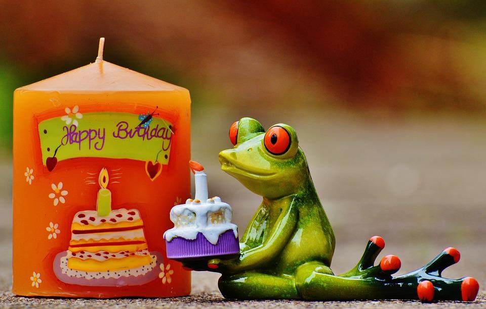 Free photo frog greeting card happy birthday birthday greeting max happy birthday birthday frog greeting greeting card m4hsunfo