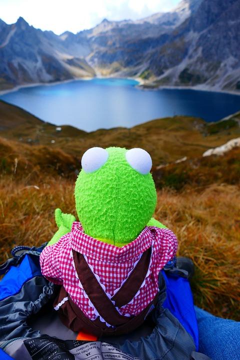 Reservoir, Dam, Lüner Lake, Kermit, Frog, Green, Doll
