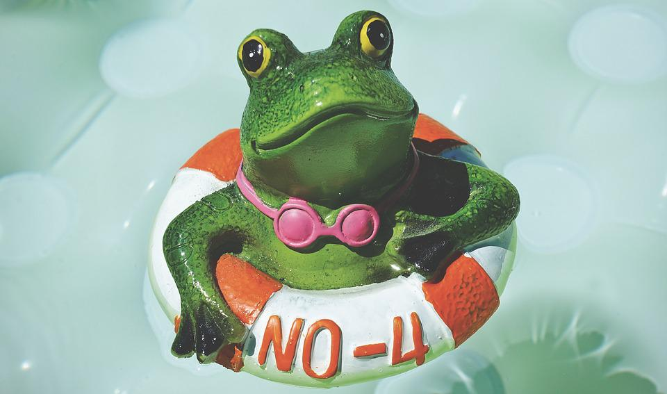 600c18d18f Free photo Frog Summer Cute Figure Swimming Ring Swim Funny - Max Pixel