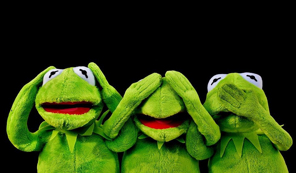 Kermit, Not Hear, Not See, Not Speak, Funny, Frogs