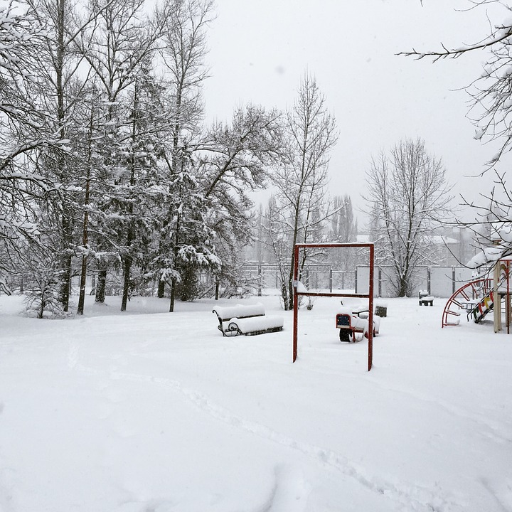 Snowfall, Winter, Cold, Frost, Snowflakes
