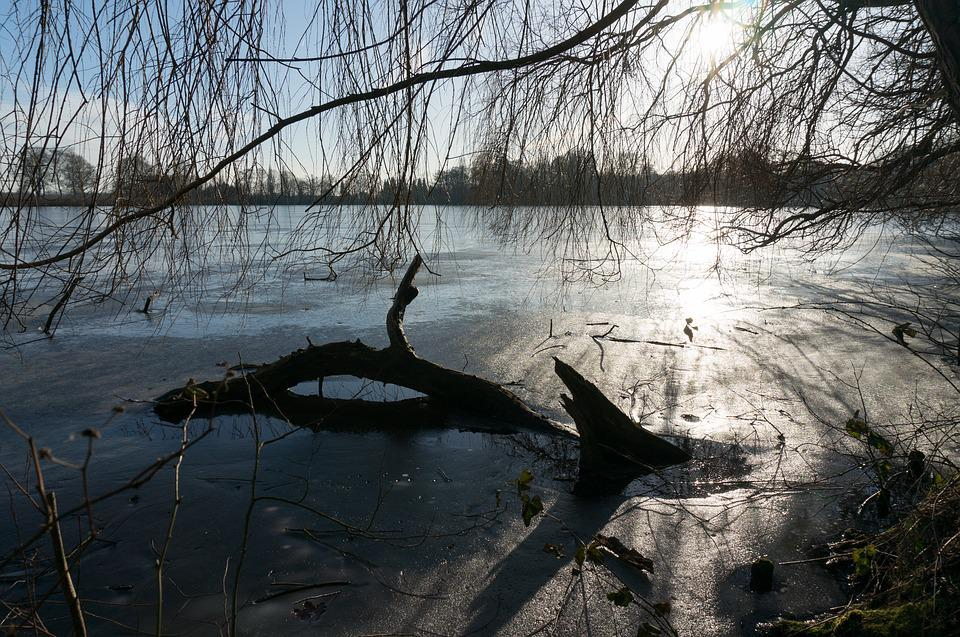 Frozen, Sea, Winter, Cold, Ice, Water, Nature, Frost