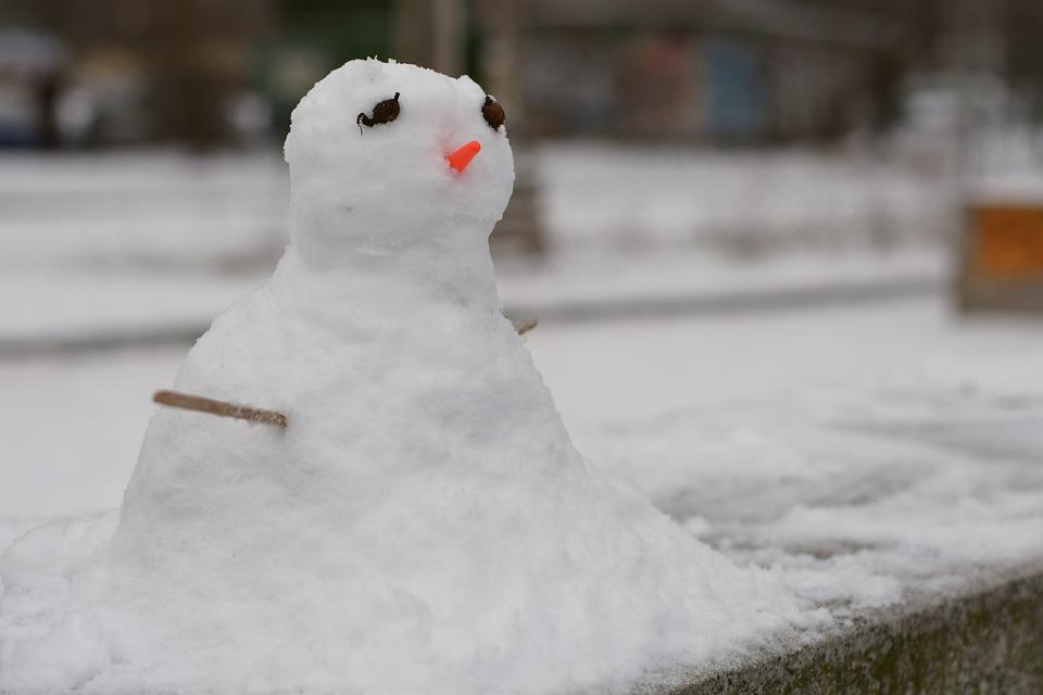 Winter, Snow, Cold, Ice, Frost, Nature, Pleasure