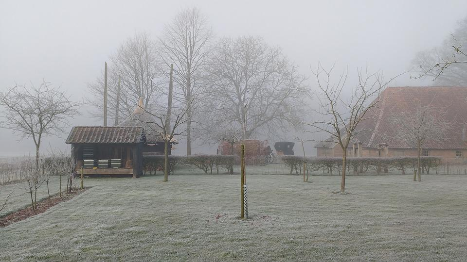 Winter, Landscape, Dutch Landscape, Cold, Frost, Ripe