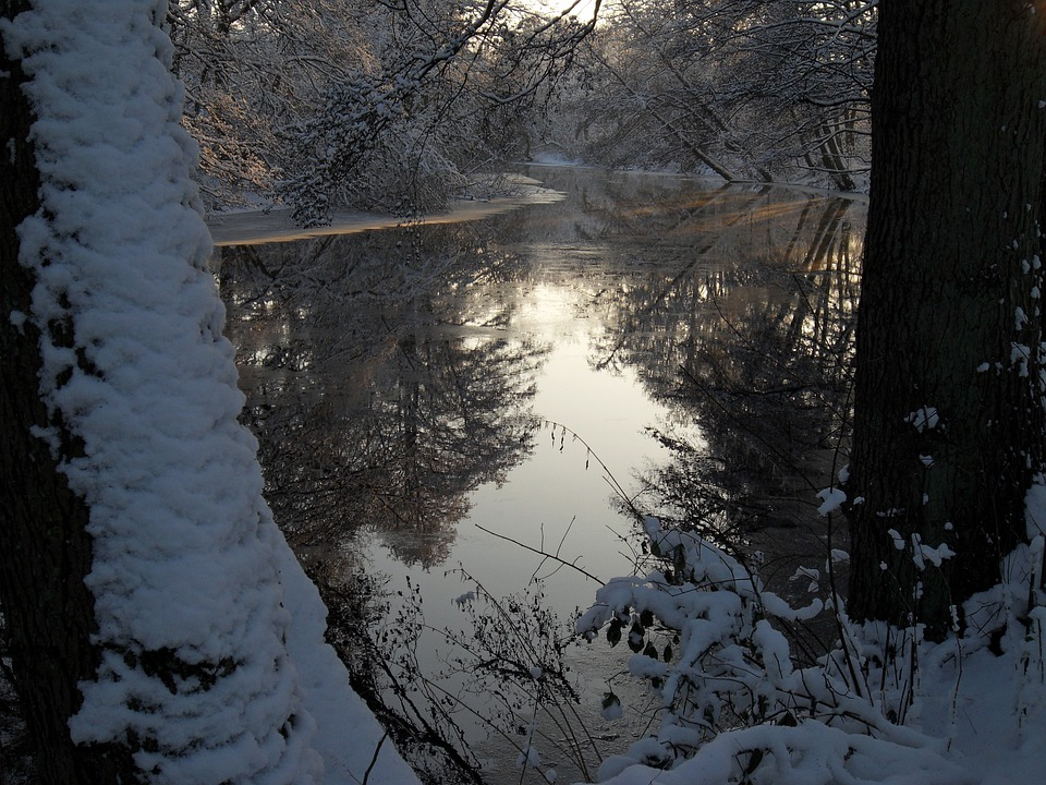 Winter, Frost, Ice, Winter Magic, Mirroring, Water