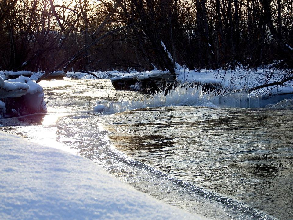 Winter, Snow, Frost, Leann, Ice, Cold, Snowdrift