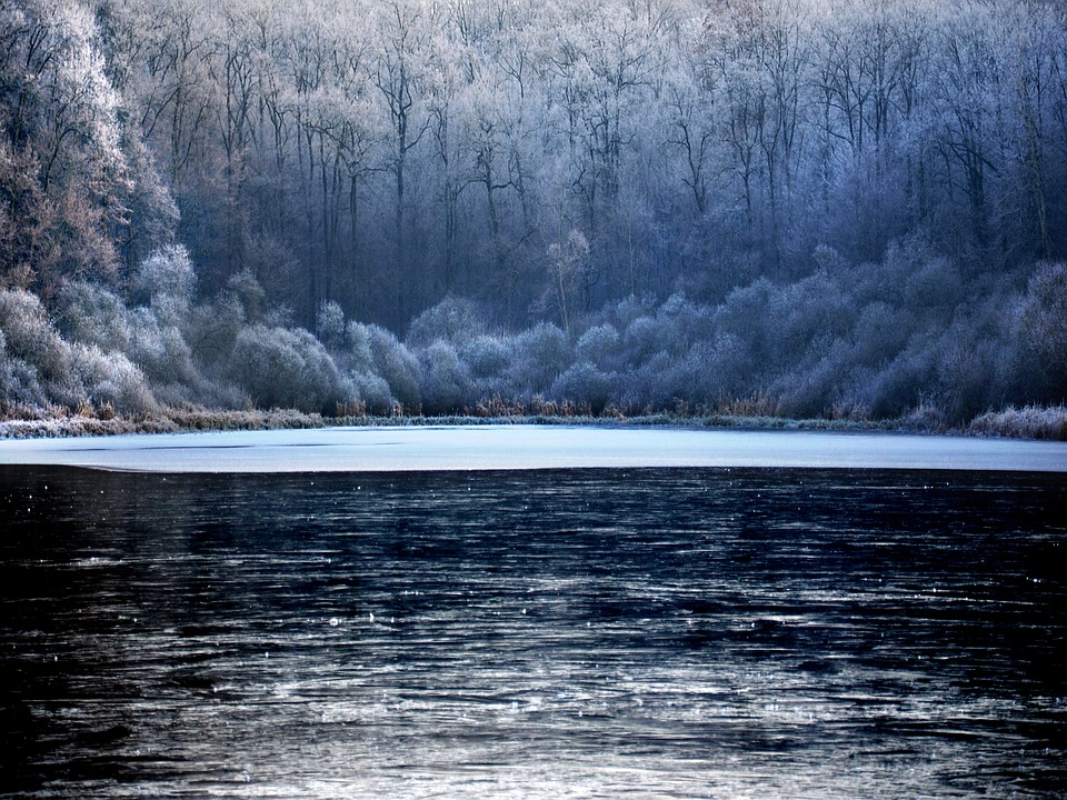 Winter, Frost, Cold, Frozen, Nature, Ice, Crystals