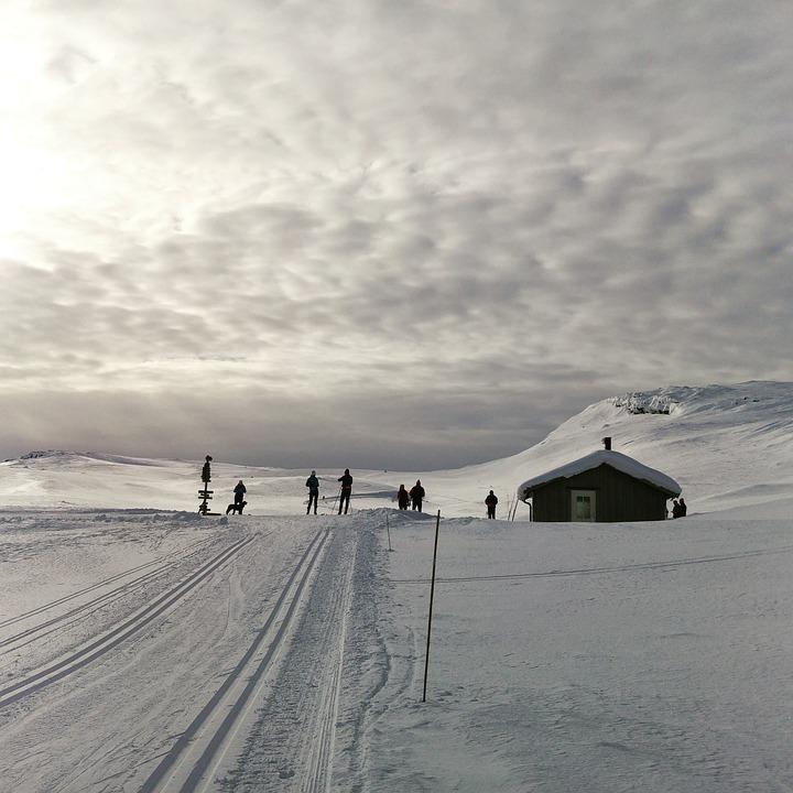 Snow, Winter, Landscape, Frozen, Nature, Outdoors