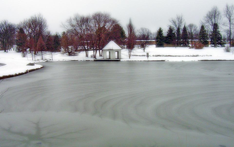 Frozen, Pond, Park, Ice, Winter, Trees
