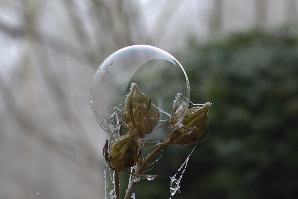 Soap Bubble, Pattern, Structure, Frozen, Cold, Freeze