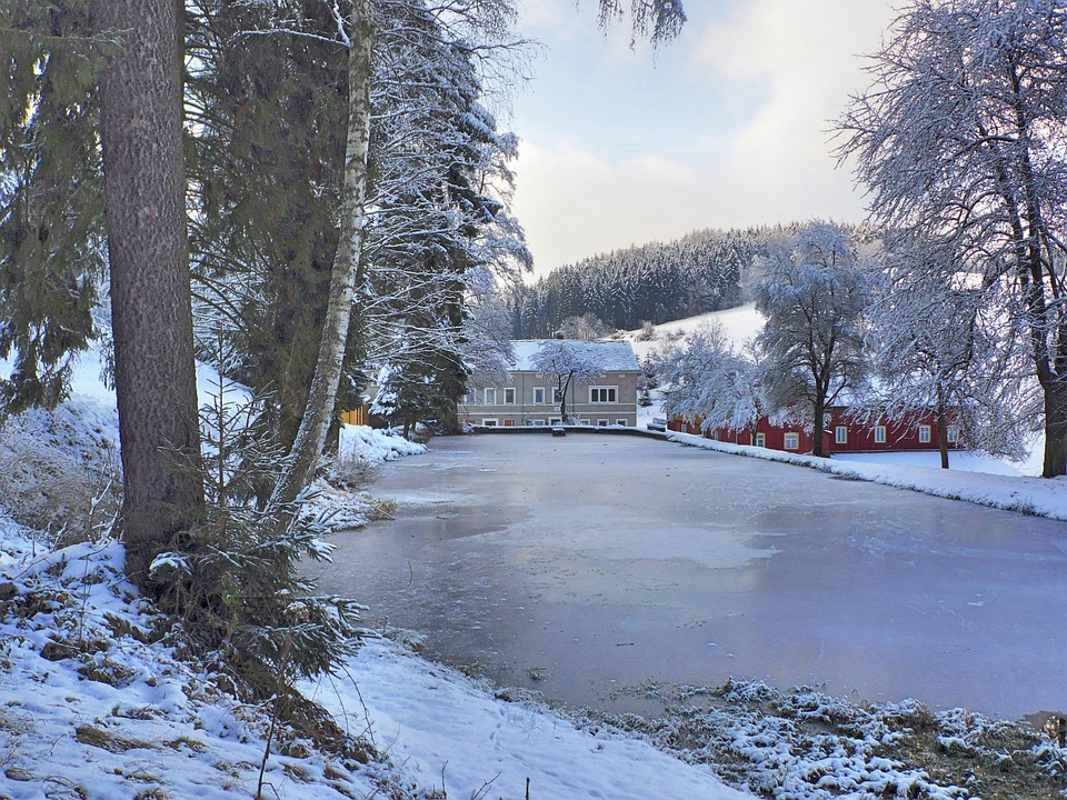Frozen Pond, Winter, Ice, Winter Magic, Snow, Frost