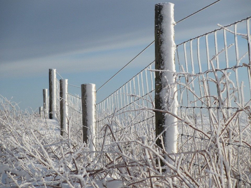 Winter, Snow, Fence, Snowfall, Outdoors, Ice, Frozen