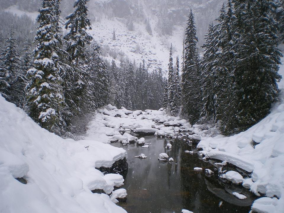 Snow, Winter, Cold, Ice, Frozen, Nature, Canada