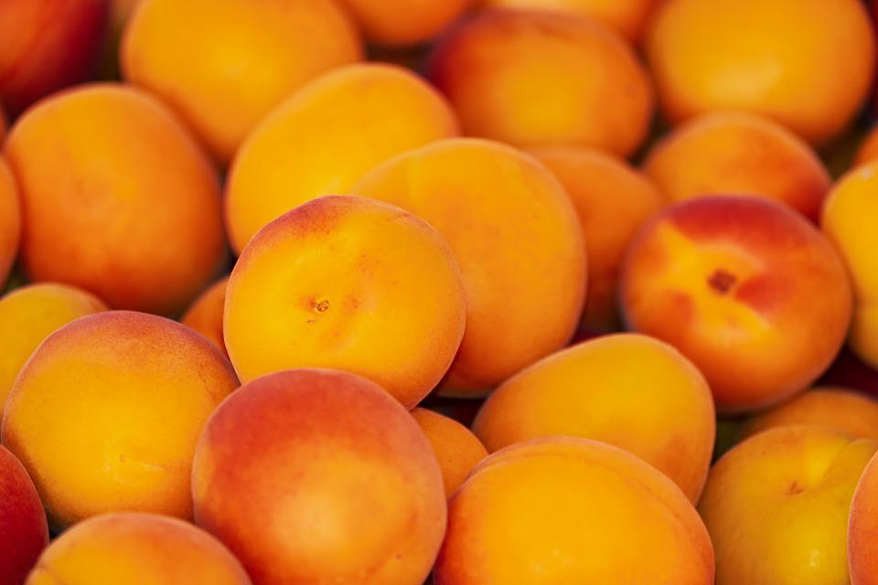 Apricots, Apricot, Fruit, Fruits, Sweet, Delicious