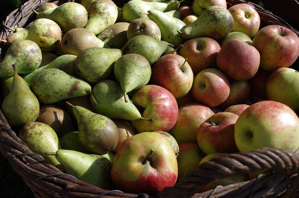 Apple, Pears, Fruits, Fruit, Fruit Basket, Food
