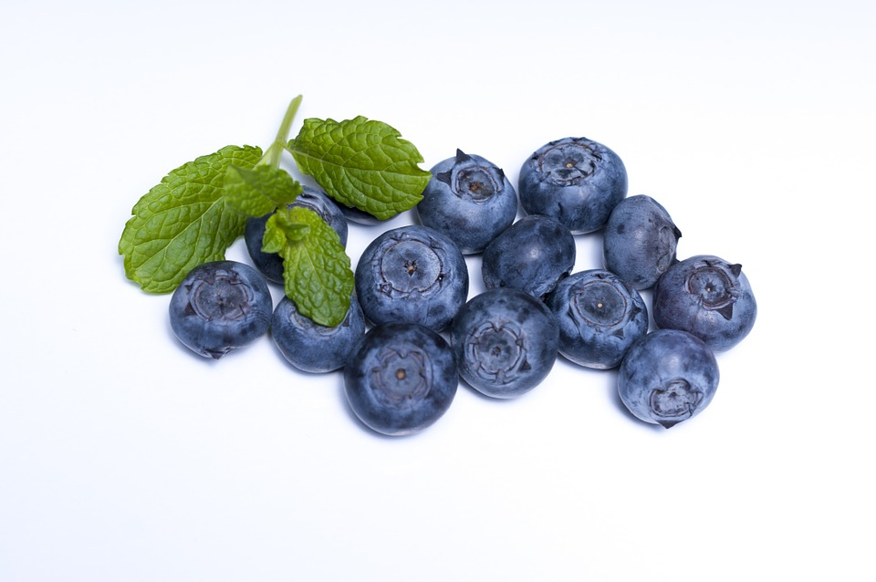 Blueberry, Blueberries, Fruit, Food, Berry, Berries
