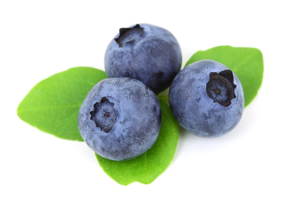 Berry, Blue, Blueberry, Food, Fresh, Fruit, Isolated