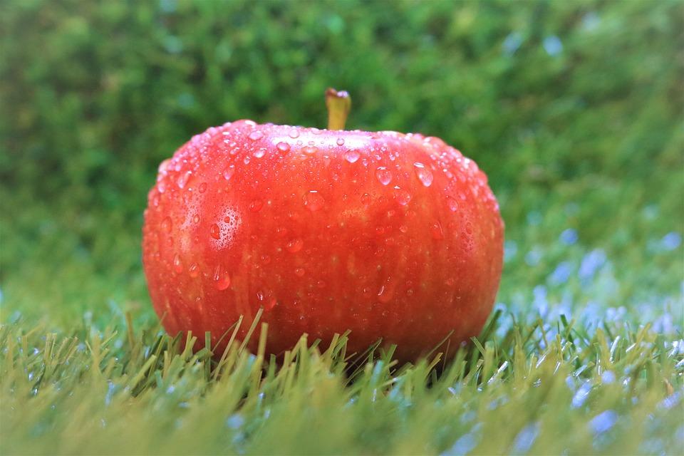 Fruit, Apple, Nature, Food, Summer, Graze, Fresh