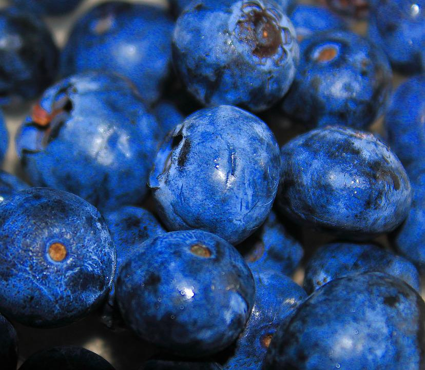 Blueberries, Fruit, Blueberry, Juicy, Food