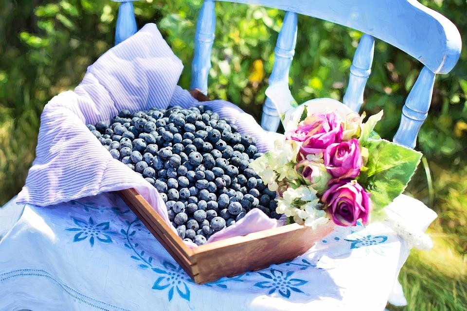 Blueberries, Summer, Fruit, Healthy, Fresh, Sweet