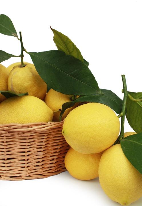 Lemons, Citrus Fruits, Fruit, Basket, Mature, Juice