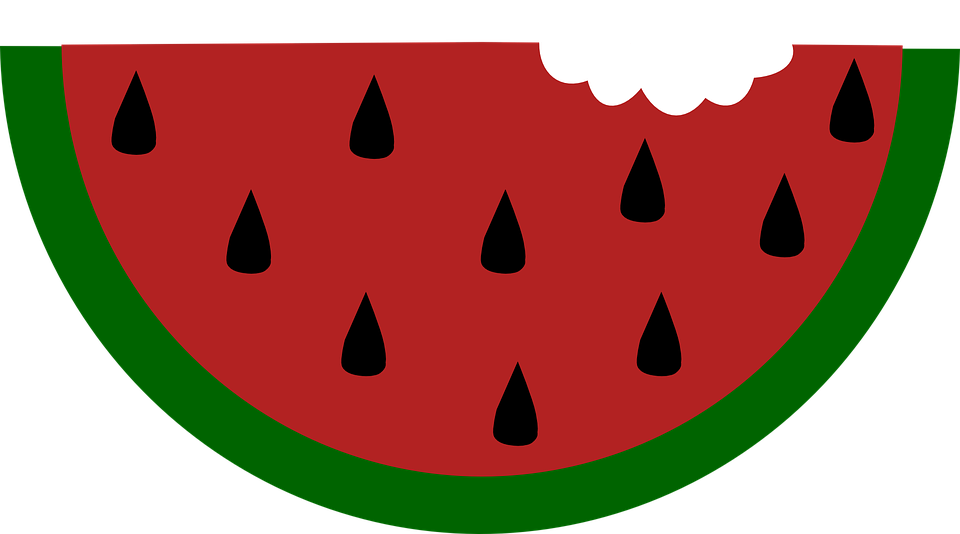 Food, Slice, Fruit, Bitten, Watermelon, Melon, Summer