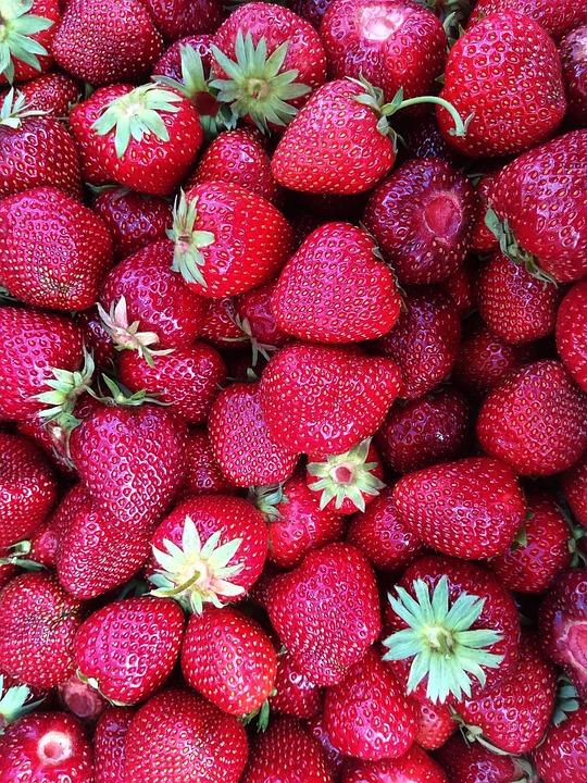 Strawberries, Fruit, Harvest, Crops, Nature
