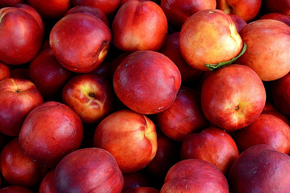 Nectarines, Fruit, Nature, Diet