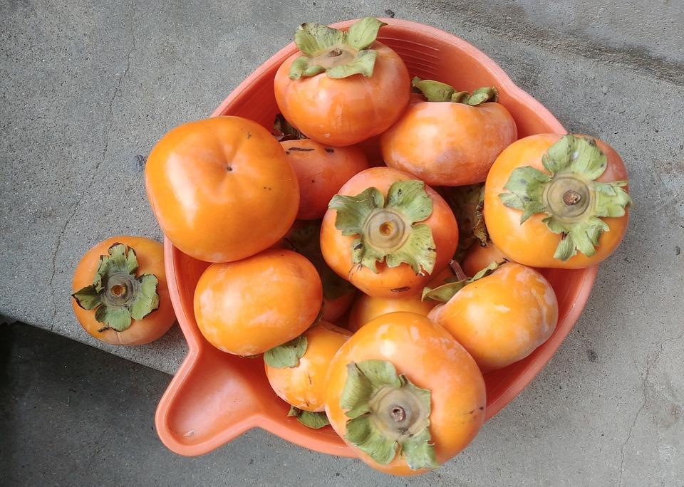 Persimmon, Fruit, Harvest, In Autumn, Sejong City