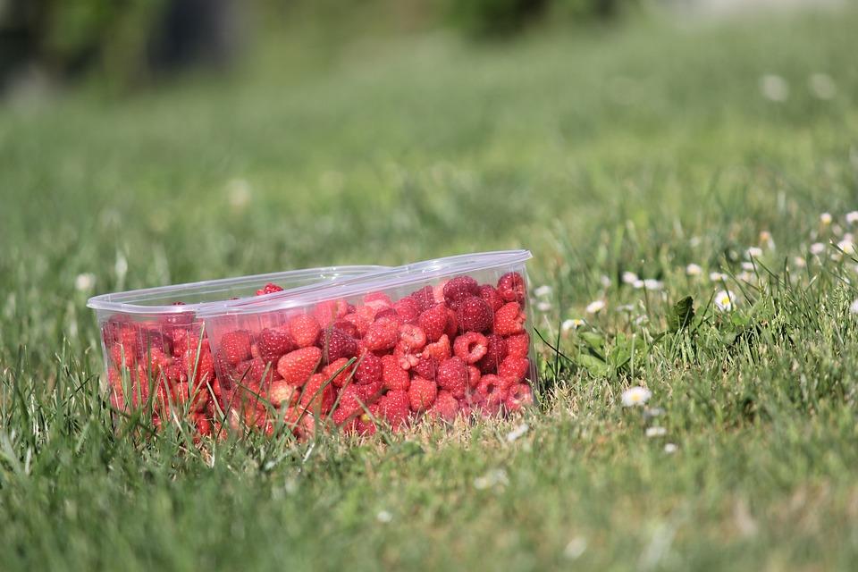 Raspberries, Fruit, Delicious, Sweet, Ripe, Berries