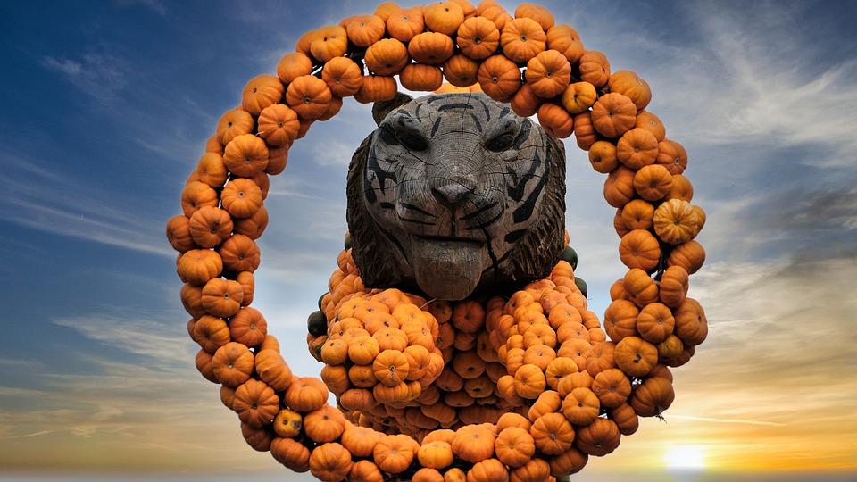 Tiger, Pumpkin, Sunset, Fruit, Fall, Figure