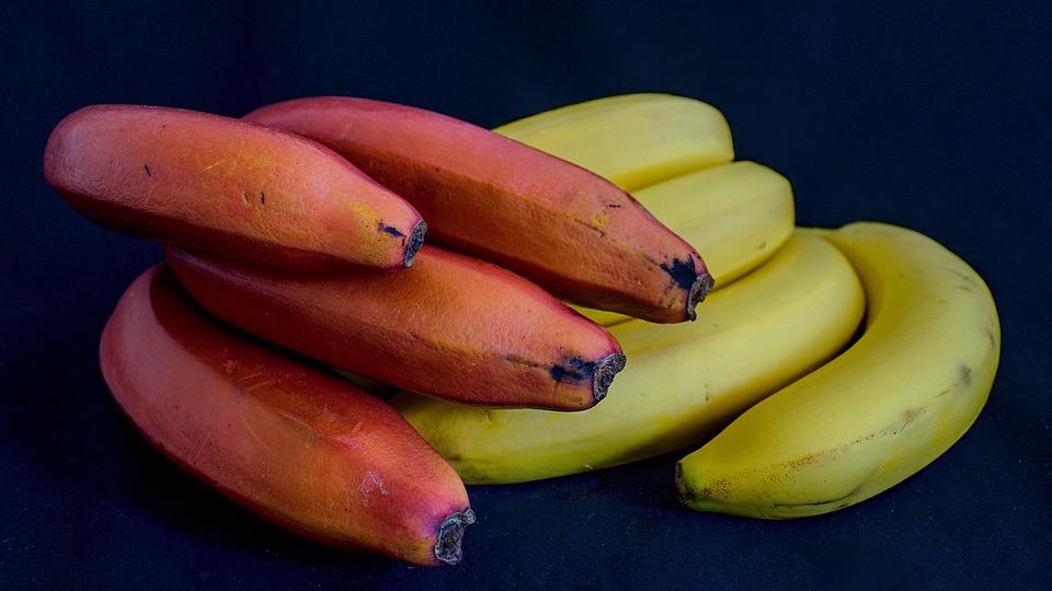 Bananas, Fruits, Food, Bunch, Produce, Yellow Bananas