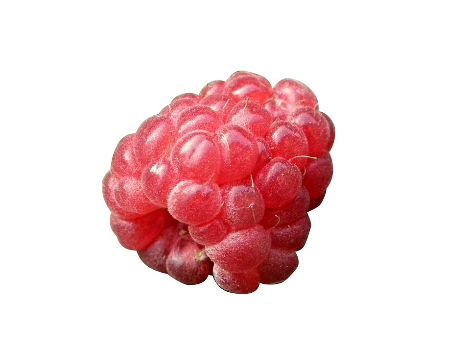Berry, Raspberry, Red, Fruits, Cut-out, Draft, White