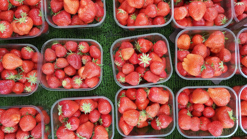 Berries, Boxes, Edible, Food, Fresh, Fruits, Healthy