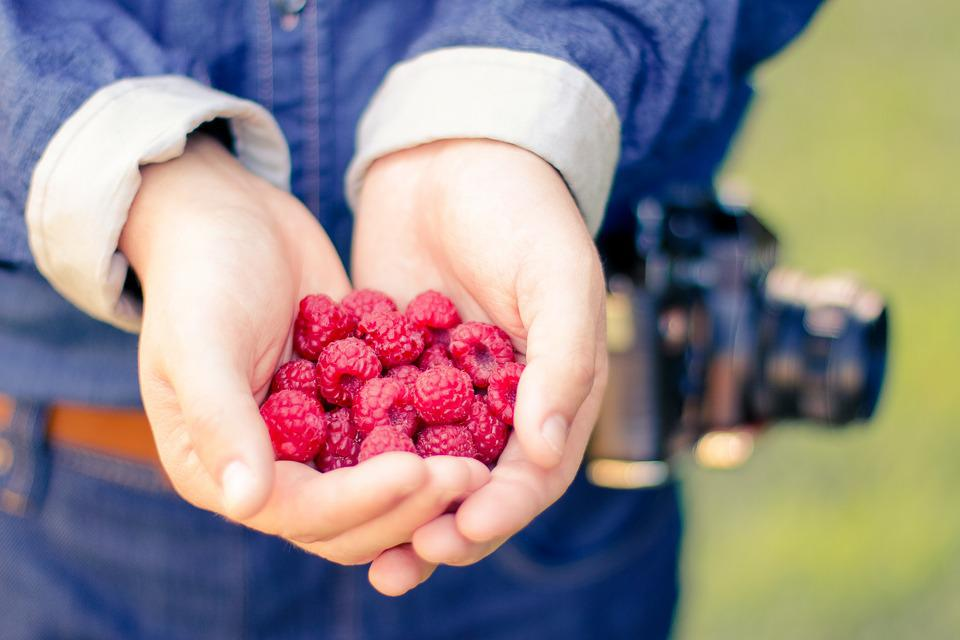 Healthy, Hands, Fruits, Raspberries