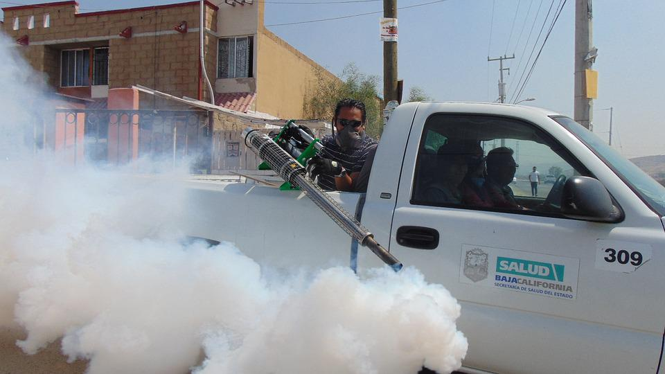 Fumigation, Street, Pesticide, Insect, Insecticide