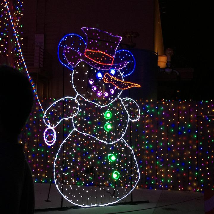 Disney, Osborne Lights, Family, Fun