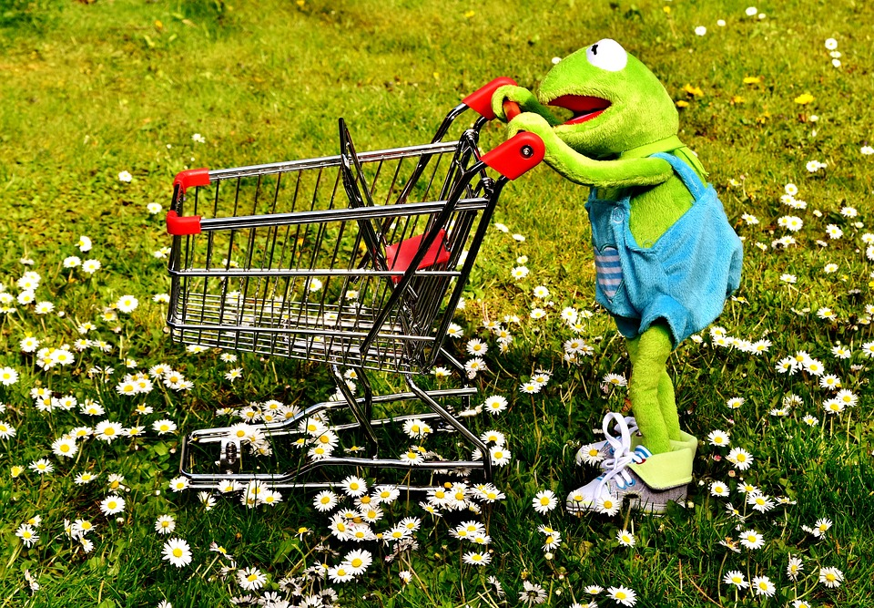 Free Photo Fun Kermit Soft Toy Shopping Frog Shopping Cart Max Pixel