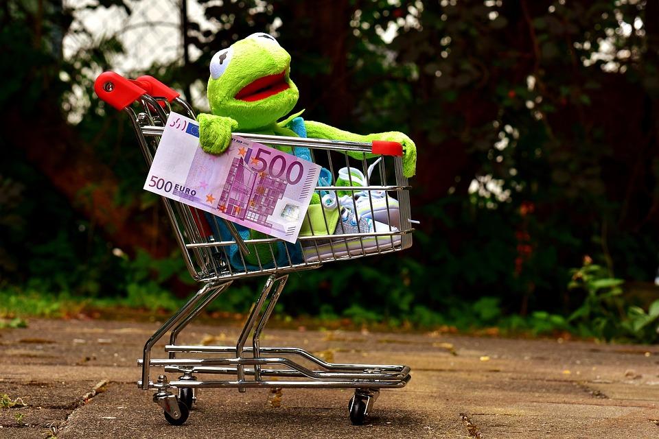 Kermit, Shopping Cart, Shopping, Frog, Fun