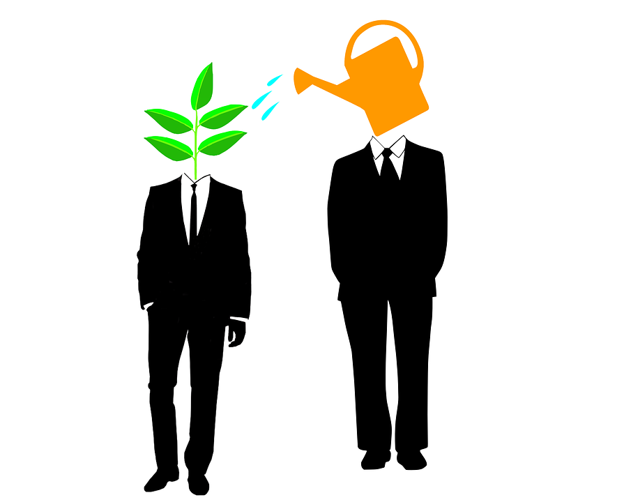 Mentor, Startup, Mentorship, Advice, Funding
