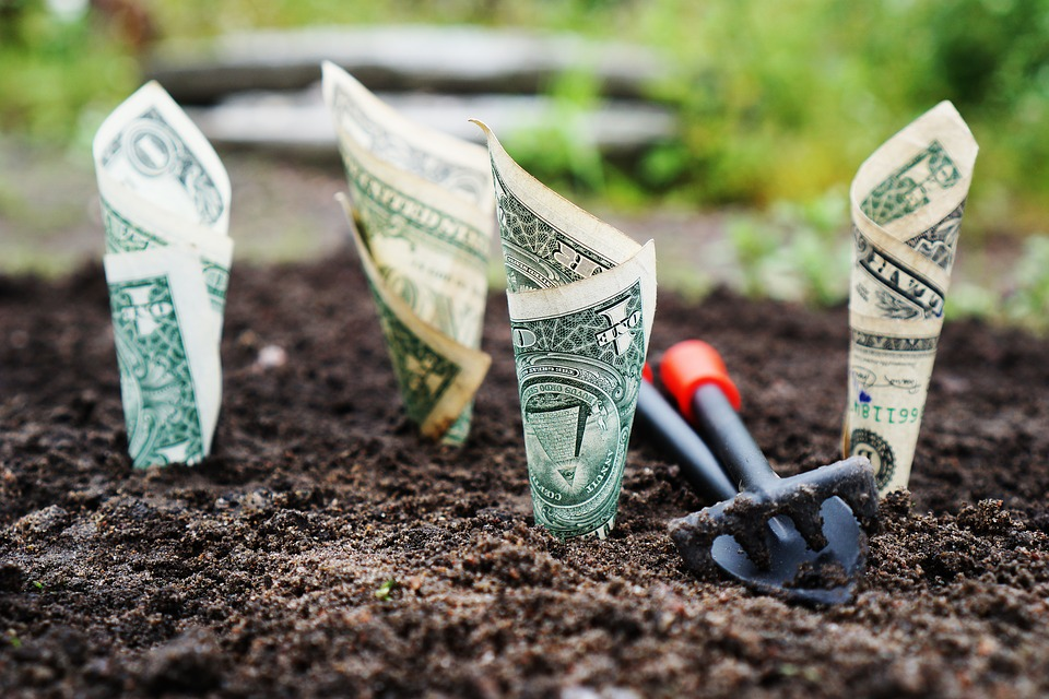 Money, Grow, Interest, Save, Invest, Shares, Funds