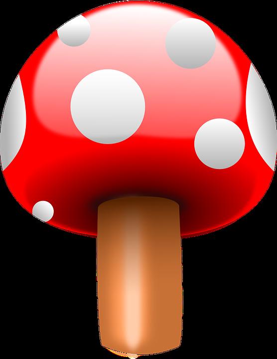 Fly Agaric, Mushroom, Red, Fungi, Fungus, Poison