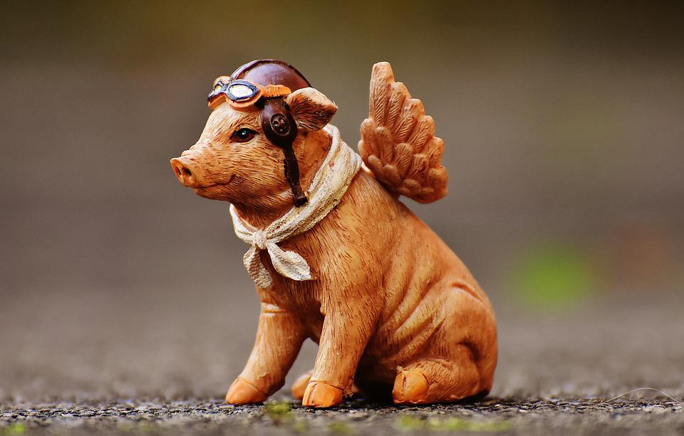 Lucky Pig, Guardian Angel, Fig, Funny, Cute, Angel