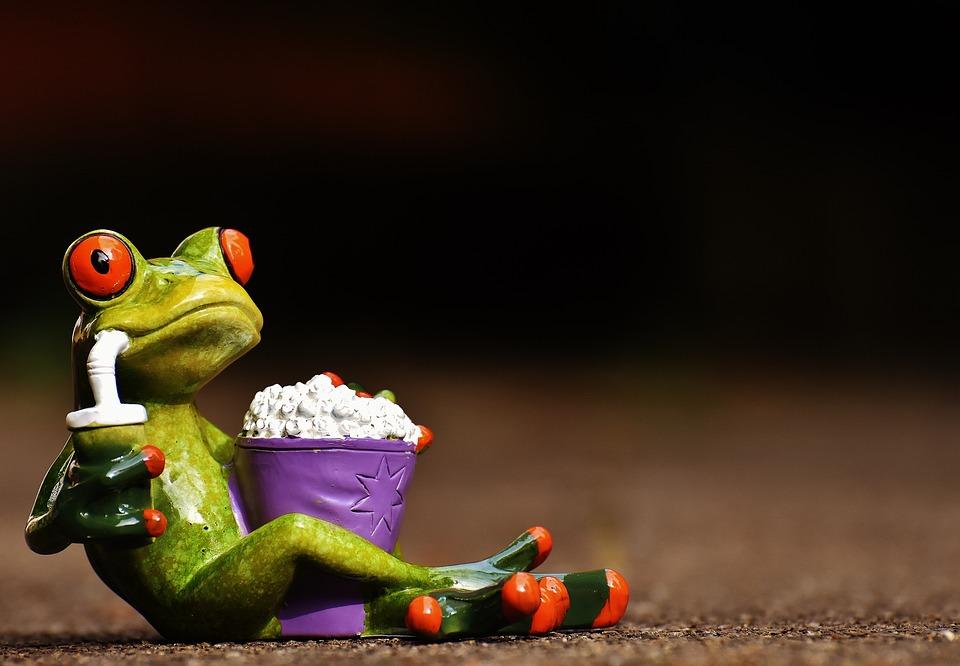 Frog, Cinema, Popcorn, Funny, Cute, Sweet, Fig, Snack