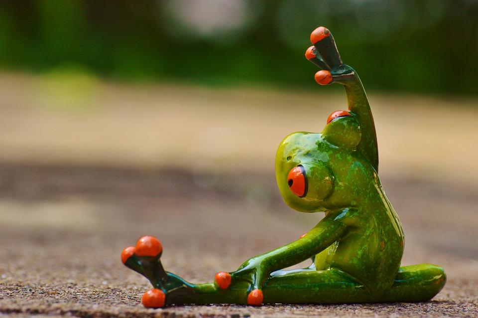 Sport, Gymnastics, Frog, Funny, Fitness, Fit, Sporty
