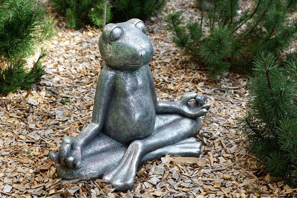 Frog, Rest, Meditation, Summer, Yoga, Funny, Couch