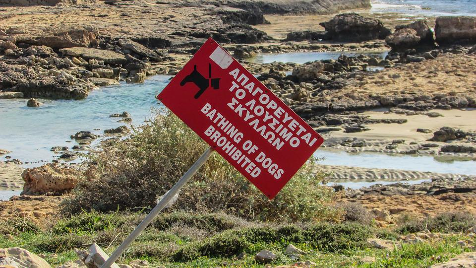 Sign, Strange, Beach, Prohibitive, Red, Unusual, Funny