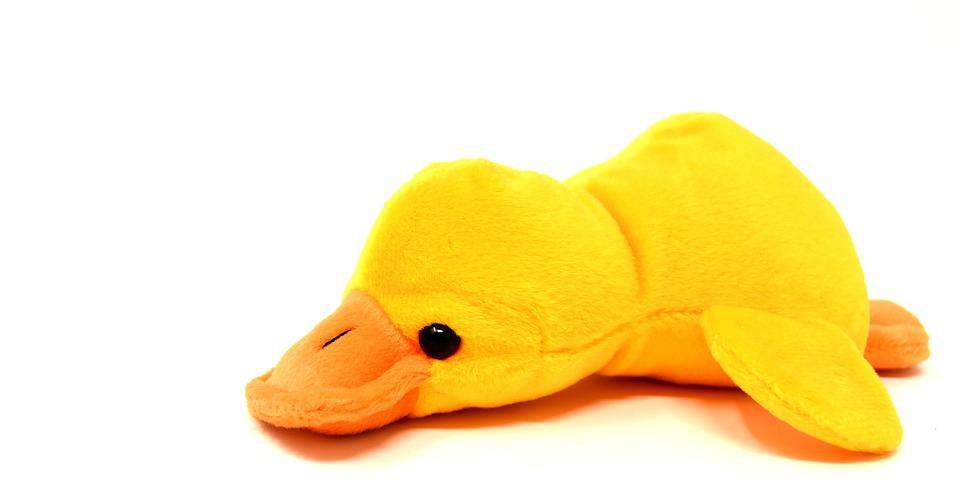Duck, Soft Toy, Cute, Funny, Toys, Sweet
